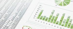 Excel 2007-2010 Expert: Analyse en rapportage
